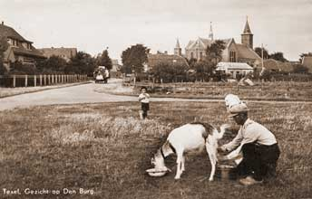 History Texel