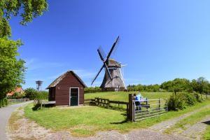 Mühle de Phenix