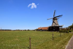 Corn and mustard mill De Verwachting