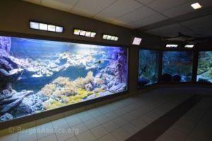 Zee Aquarium