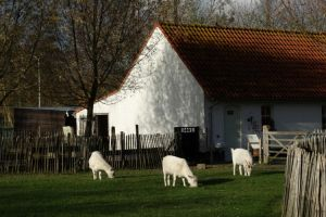 Kinderboerderij De Lenspolder