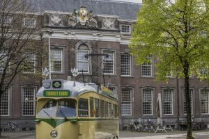 Hop-on Hop-off Tourist Tram
