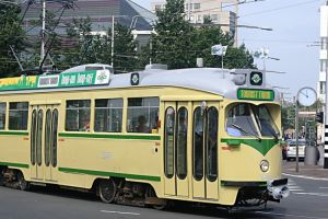 Hop-on Hop-off Tourist Tram